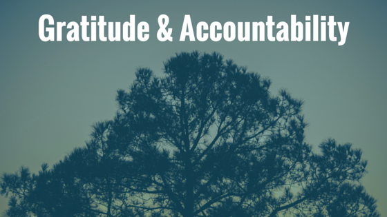gratitude and accountability page header